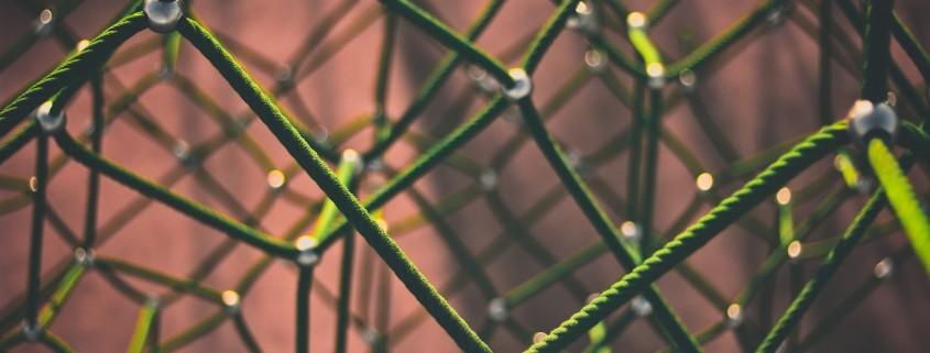 network-1246209_1920